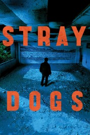 Stray Dogs