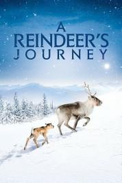 A Reindeer's Journey