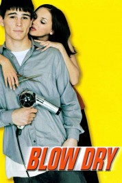 watch blow dry 2001 online free